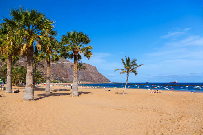 visit-the-canaries-this-winter