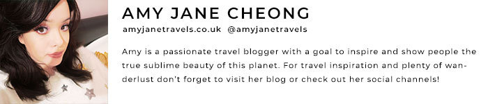 Guest Author Bio - Amy Jane Cheong