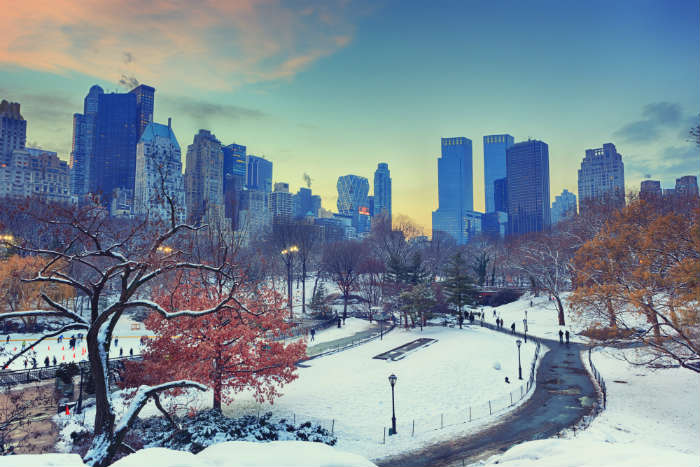 Central Park, New York, in the snow