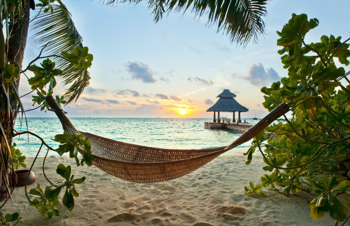 Hammock By Beach In The Maldives