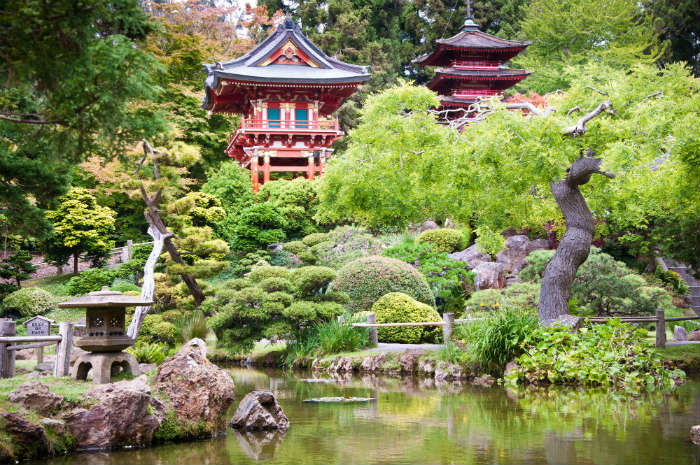Things you need to do on a weekend in San Francisco - Golden Gate Park