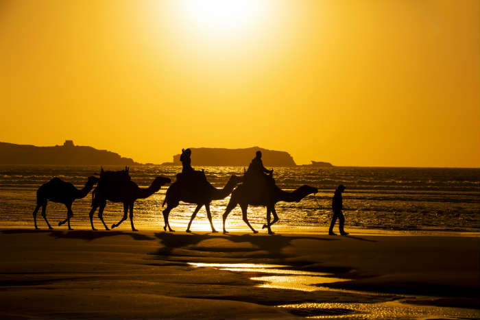 around-the-world-in-80-pictures-essaouria-morocco