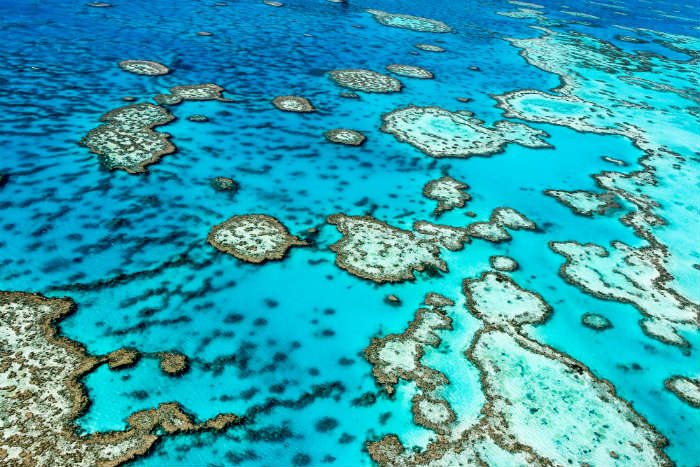 around-the-world-in-80-pictures-great-barrier-reef-australia