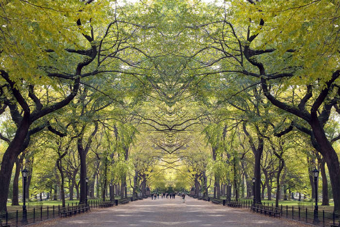 Best city parks-Central Park, New York