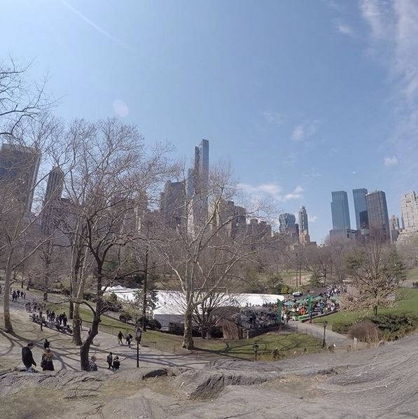 new york on instagram-central park