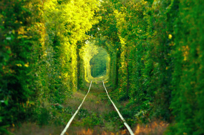 The Tunnel of Love in the Ukraine
