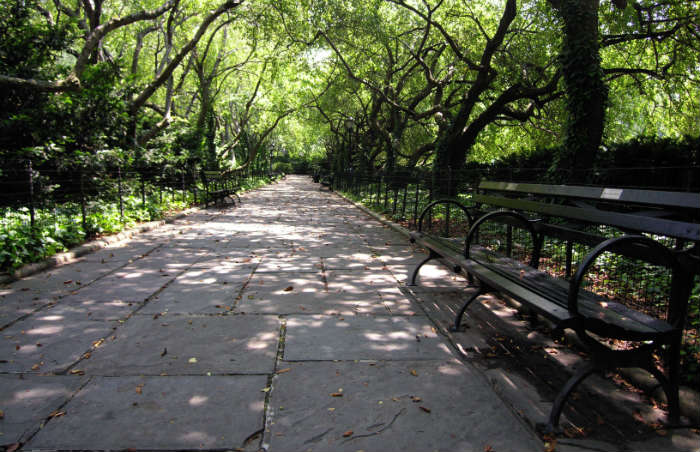 Hidden pathways in Central Park
