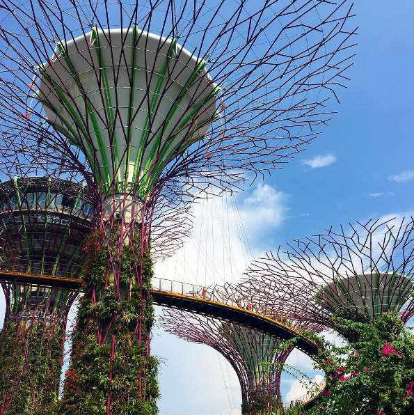 Gardens By The Bay, Singapore-Shandos Cleaver
