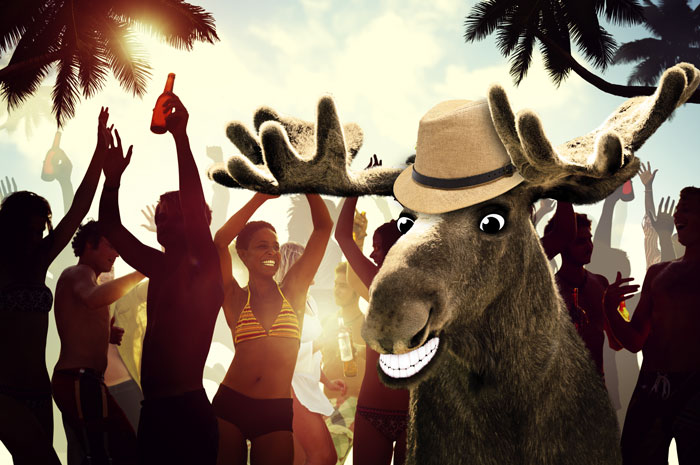 Chris Moose in Ibiza
