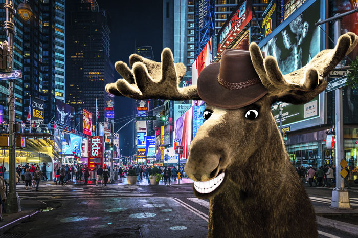 Chris Moose in New York